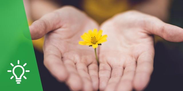 Reconciliación con la Creación | La urgencia de la paz