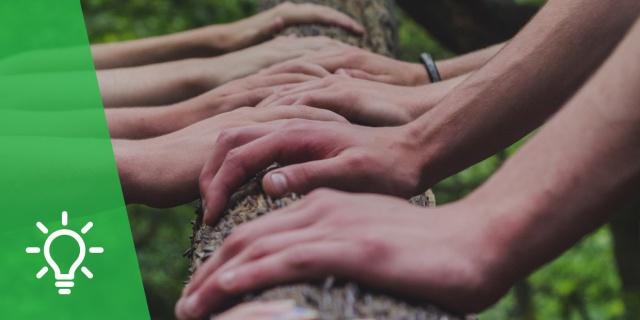 Reconciliación con la Creación | Relevancia de la Encíclica Laudato Si' en el tema de la educación